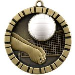 Volleyball  3-D Series Medal Awards