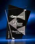 Abstract Clear and Black Acrylic Award Black Acrylic