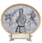 Legend Karate Oval Award Resin Trophy Awards