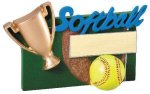 Winners Cup Resin Softball Softball Awards