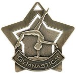 Gymnastics  Star Medal Awards