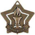 Victory  Star Medal Awards