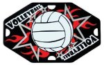 Volleyball Street Tags Street Tags
