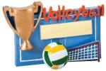 Winners Cup Resin Volleyball Volleyball Awards