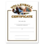 Volleyball Volleyball Awards
